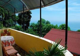 Трион c кухней - балкон