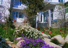 Феодора - Частный сектор  Алушта  недорогой отдых в Алуште
